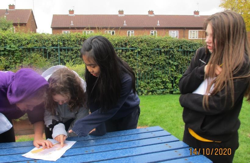 Y6 map reading