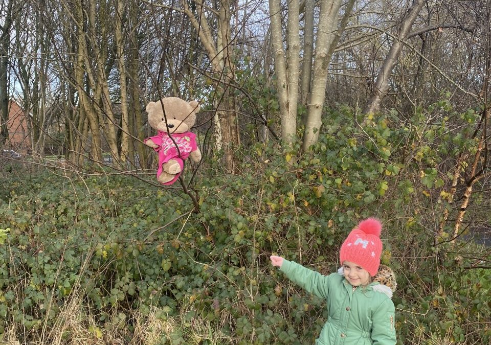 Reception Home Learning – We're Going on a Bear Hunt